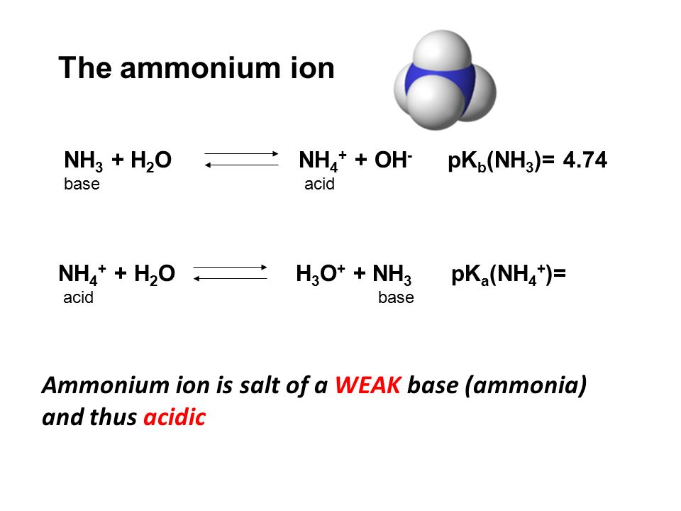 ammonia and its salt Organic derivatives of ammonia, nh 3 nitrogen atom have a lone pair of electrons, making the amine both basic and nucleophilic 221: amines advantages of the aryl diazonium salt intermediate: 1) introduces aryl substituents that are not otherwise accessible, such as -oh, -f, -i, and.
