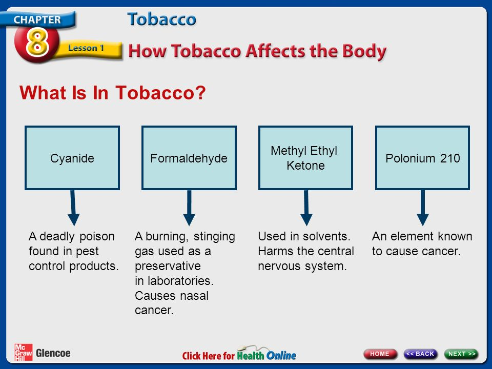 chapter 8 tobacco lesson 1 how tobacco affects the body. Black Bedroom Furniture Sets. Home Design Ideas