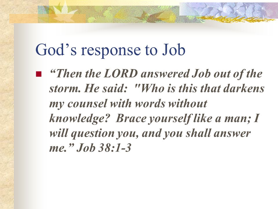 god's response to job in job Job was an exceptionally righteous man he carefully avoided acts of transgression against god's laws he behaved blamelessly but, like all of us, he had weaknesses mark 14:38 mark 14:38 watch you and pray, lest you enter into temptation the spirit truly is ready, but the flesh is weak.