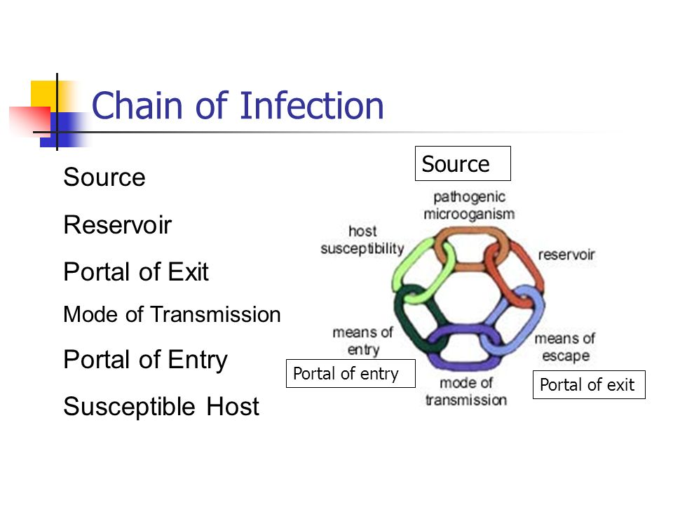 Chain of Infection Source Reservoir Portal of Exit Portal of Entry