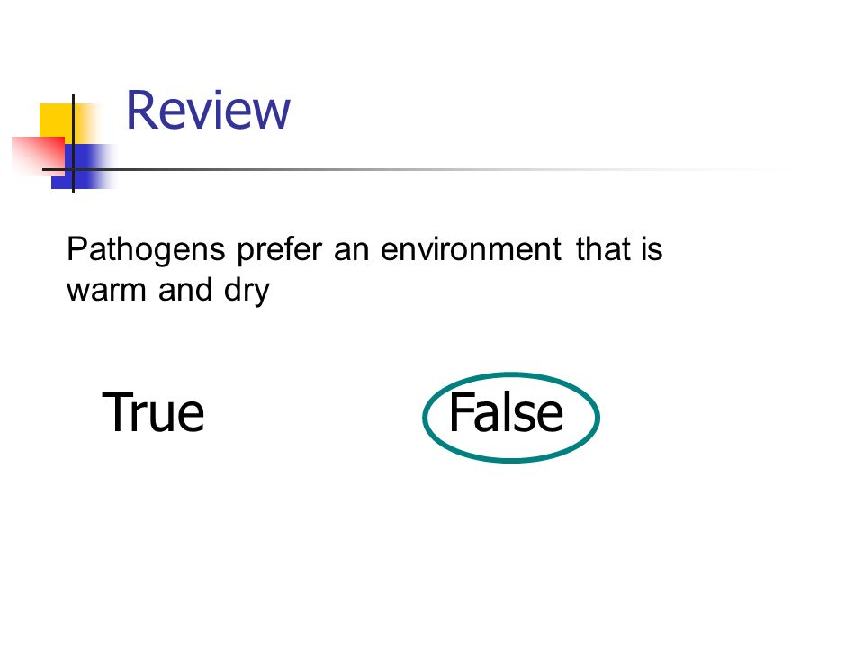 Review Pathogens prefer an environment that is warm and dry True False