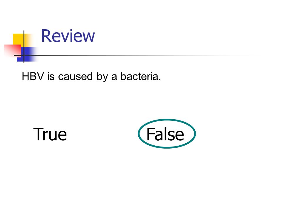 Review HBV is caused by a bacteria. True False
