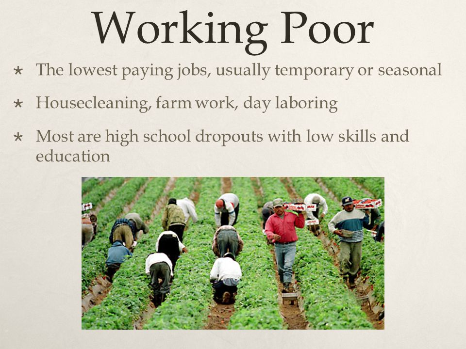 working poor Canada's working poor and precarious employment this article was originally posted on windsor's poverty reduction site: pathway to potential, by amanda lefroncois november 5, 2015.