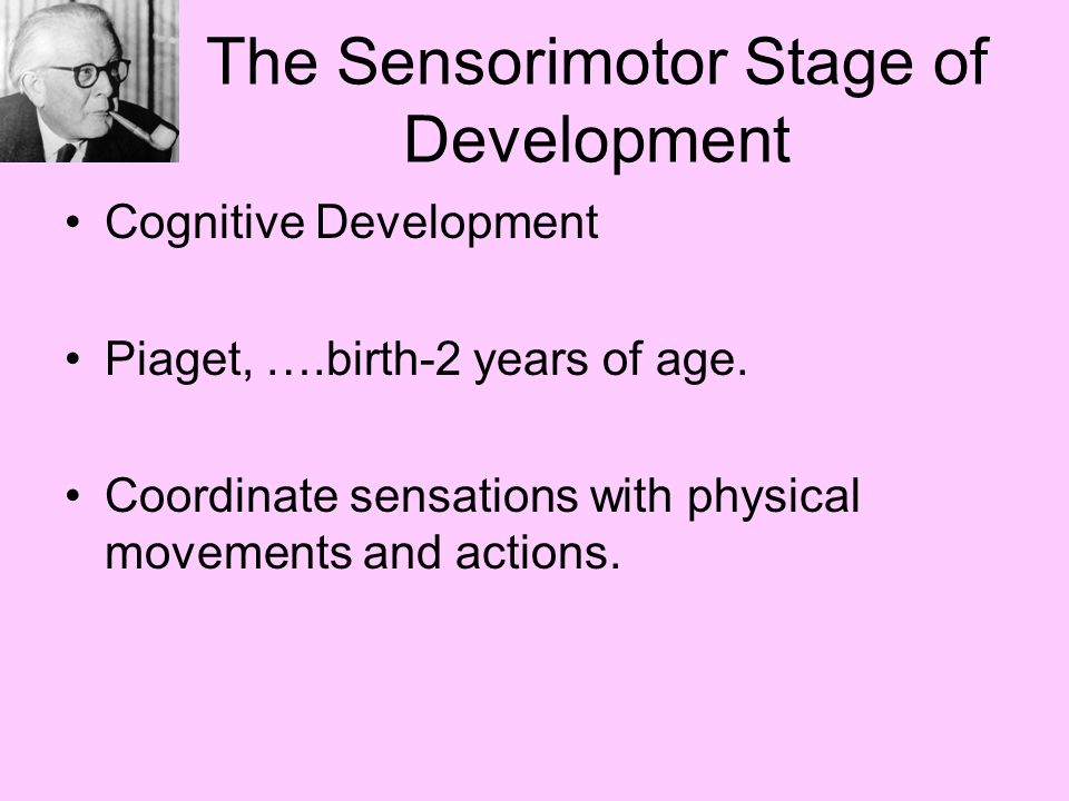 Physical cognitive and social emotional ppt video for Stages of motor development