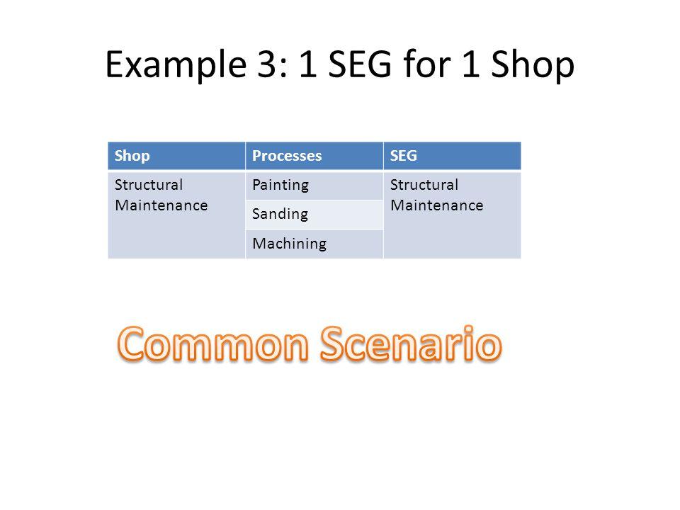 Common Scenario Example 3: 1 SEG for 1 Shop Shop Processes SEG