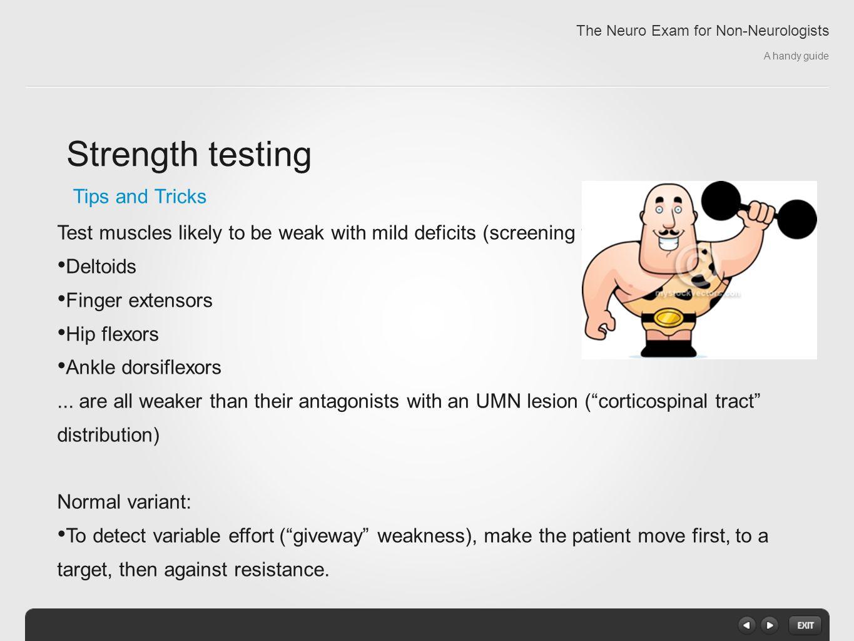 Neuro exam motor strength for General motors drug test
