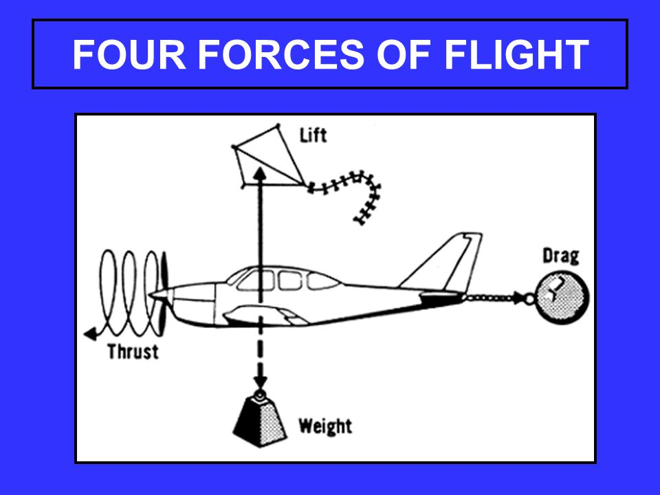 four forces of flight This session helps explorers understand the four forces of flight.