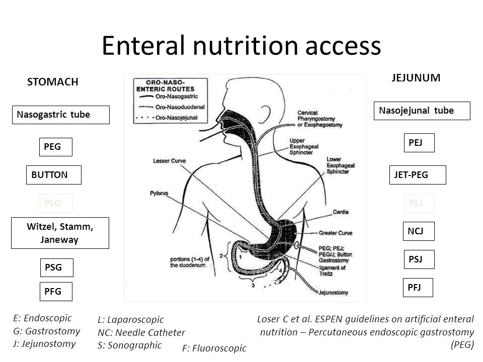 enteral and parenteral nutrition Background: the difference in outcomes in patients is unclear when 2 types of enteral nutrition, ie, tube feeding and conventional oral diets with intravenous dextrose (standard care), are compared with parenteral nutrition objective: we reviewed systematically and aggregated statistically the.