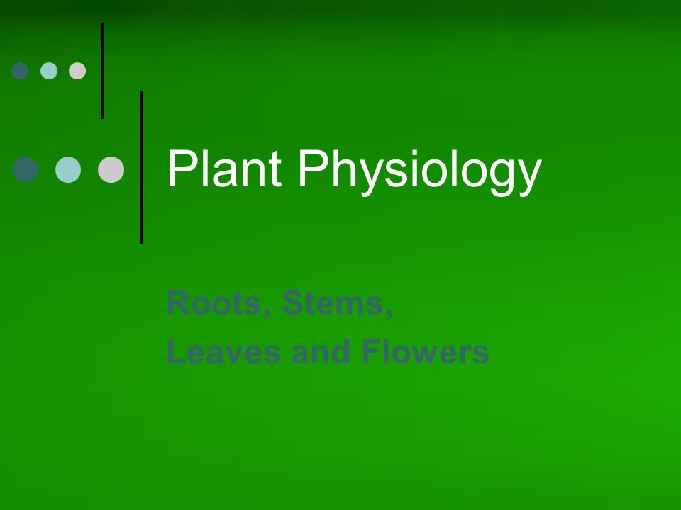 plant physiology paper 1