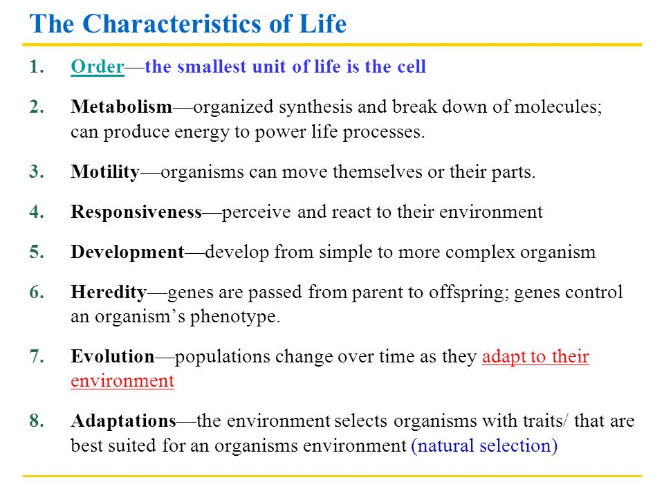 biology lecture notes characteristics of living things Biology characteristics of living things clickbiology.