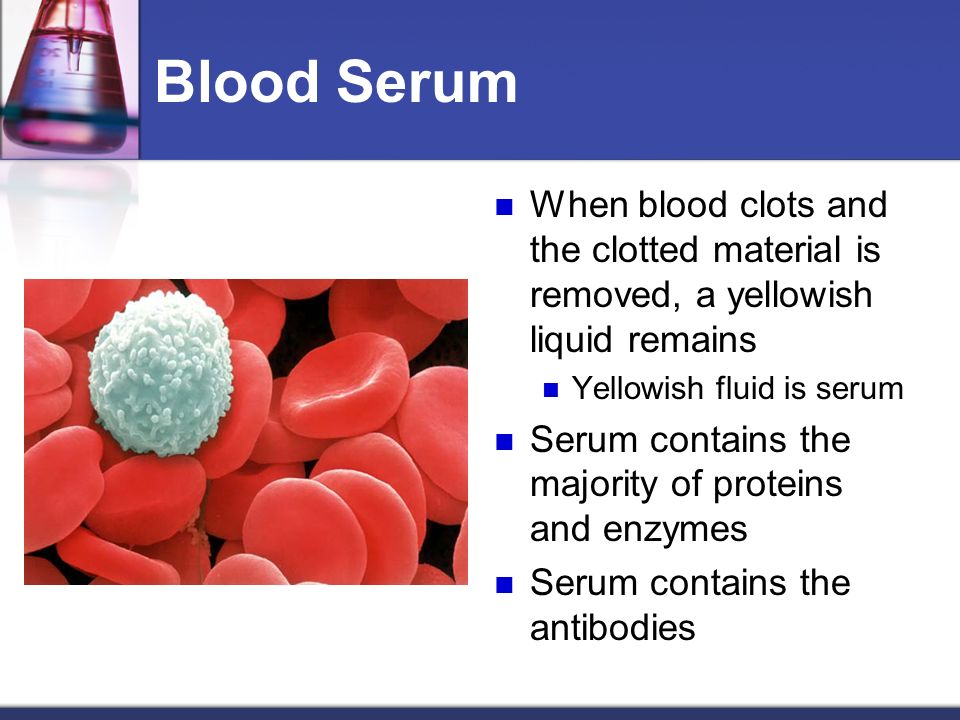 Serum (Blood) - an overview   ScienceDirect Topics