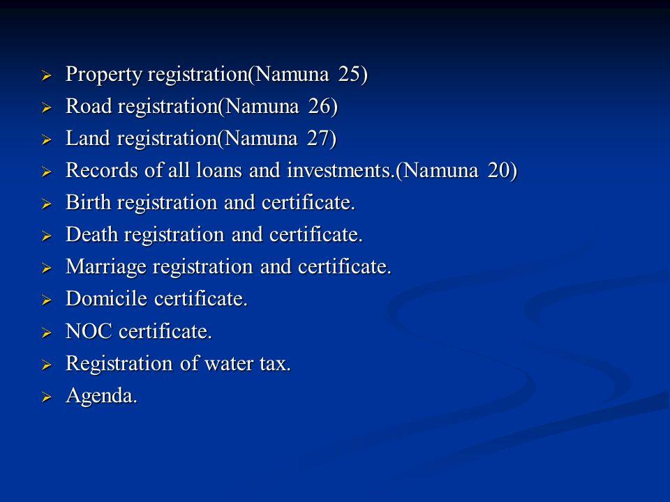 Property registration(Namuna 25)