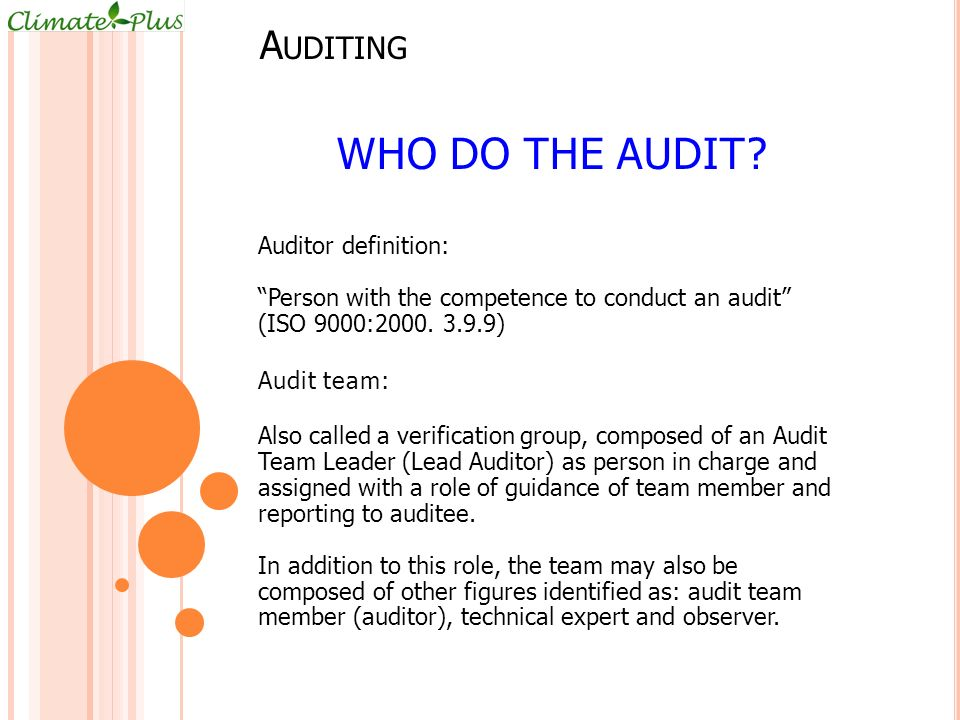 Who do the audit Auditing Auditor definition: