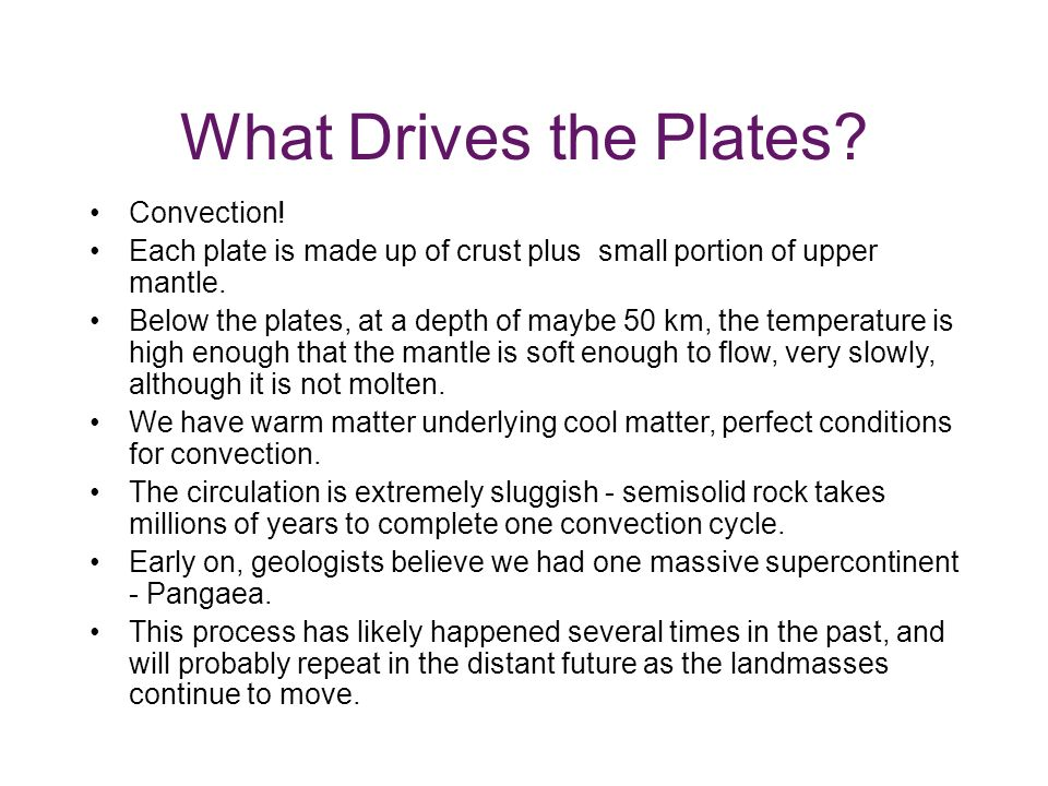 What Drives the Plates Convection!