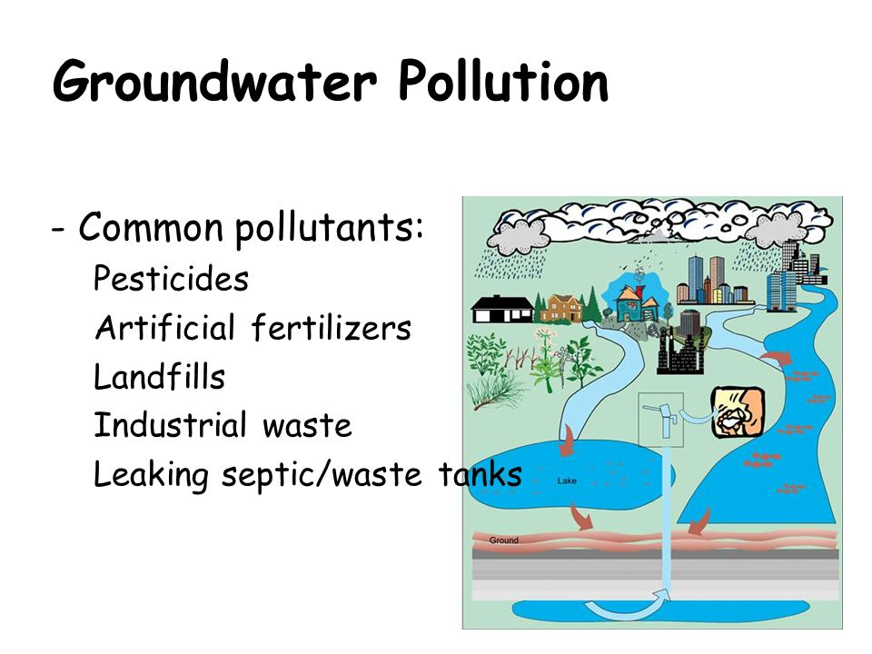 Pollution  Ppt Video Online Download. Living Room Pictures With Red Couch. Small Living Room No Fireplace. Unique Living Room Floor Lamps. Living Room Built In Shelving. The Living Room Club. Vintage Inspired Living Room Furniture. Leather Living Room Suit. Living Room Furniture Placement With Bay Window