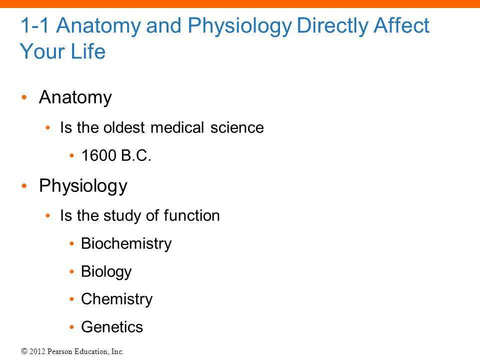 Fantástico Corexcel Anatomy And Physiology Cresta - Imágenes de ...