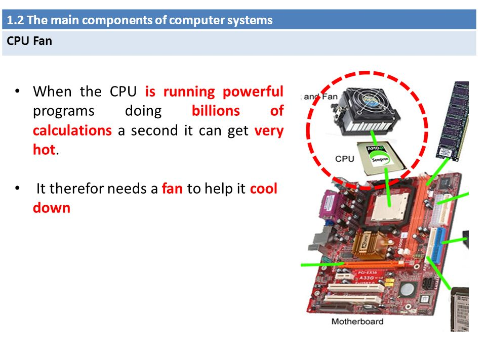 Main Components Of A Fan : Chapter types and components of computer systems ppt