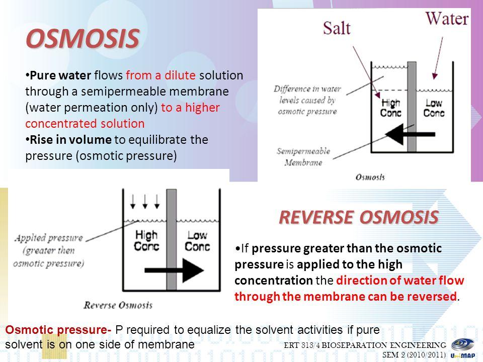 osmotic pressure worksheet the best and most comprehensive worksheets. Black Bedroom Furniture Sets. Home Design Ideas