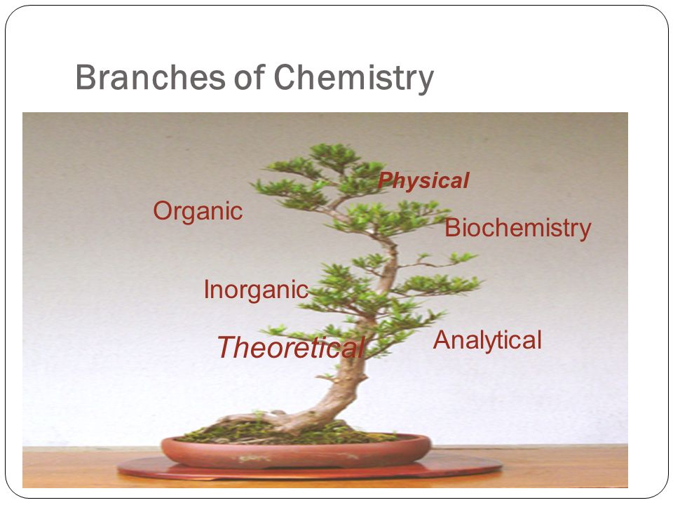 branches of chemistry Branches of chemistry 1 presentation on branches of chemistry 2 definition of chemistry • chemistry is the study of the substances.