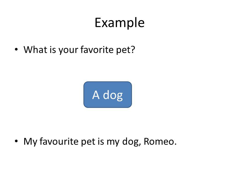 essay writing ppt video online  example a dog what is your favorite pet