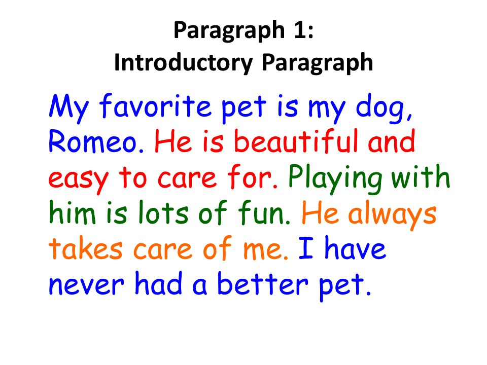essay writing ppt video online  8 paragraph 1 introductory paragraph my favorite pet is my dog