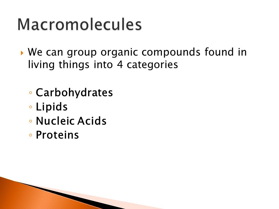 importance of carbohydrates in living organisms The biological significance of carbohydrates in living organisms the carbohydrates are a large group of organic compounds, made up of the elements carbon, hydrogen and oxygen in.
