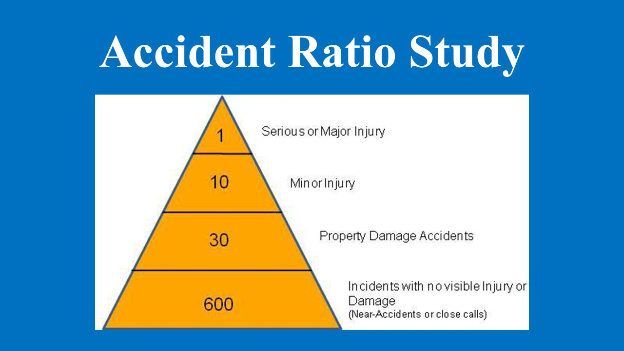 Explain the accident ratio study that was created by bird ...