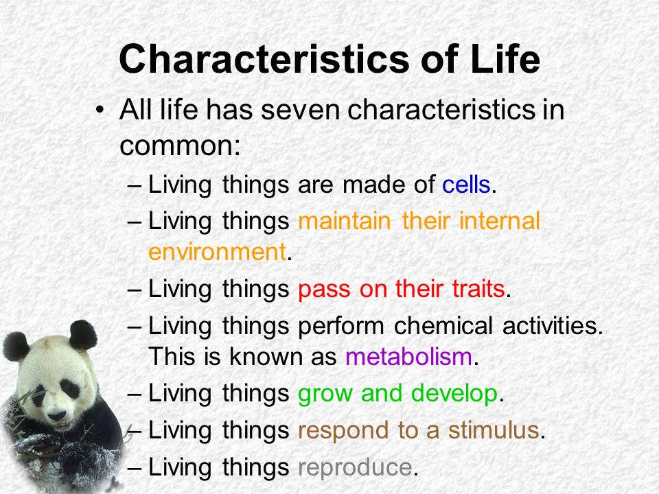 biology characteristics of life Answerscom ® wikianswers ® categories science biology what are the 7 characteristics of life what would you like to do in biology what is a characteristics.