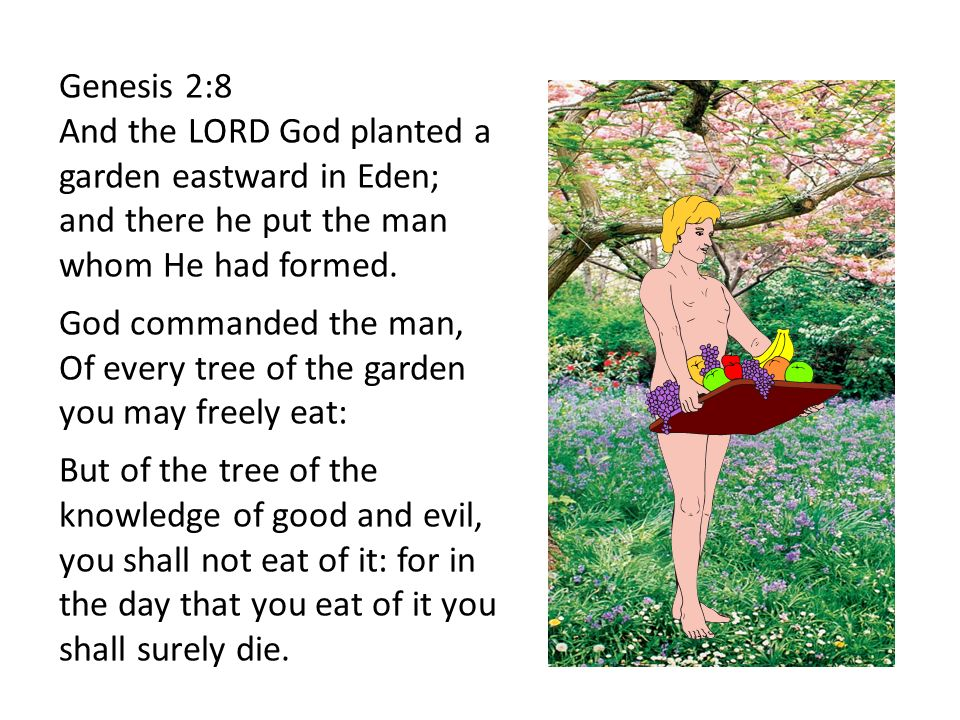 We have looked at god creating our world in 6 days 1 day for Gardening 7 days to die