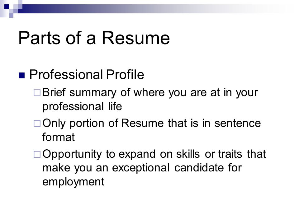 parts of a resume professional profile - Resume Professional Profile
