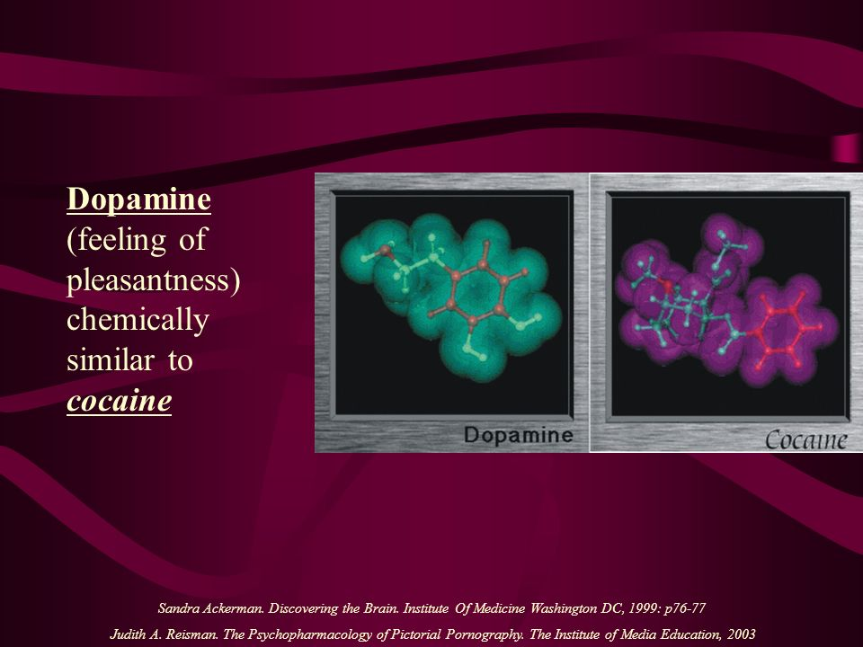 Dopamine (feeling of pleasantness) chemically similar to cocaine