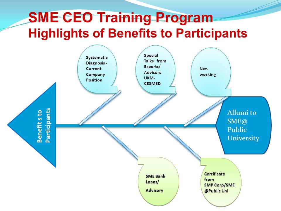 SME CEO Training Program