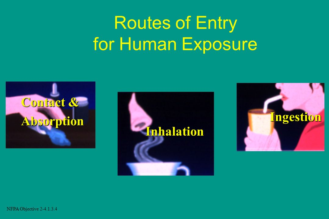 Routes of Entry for Human Exposure