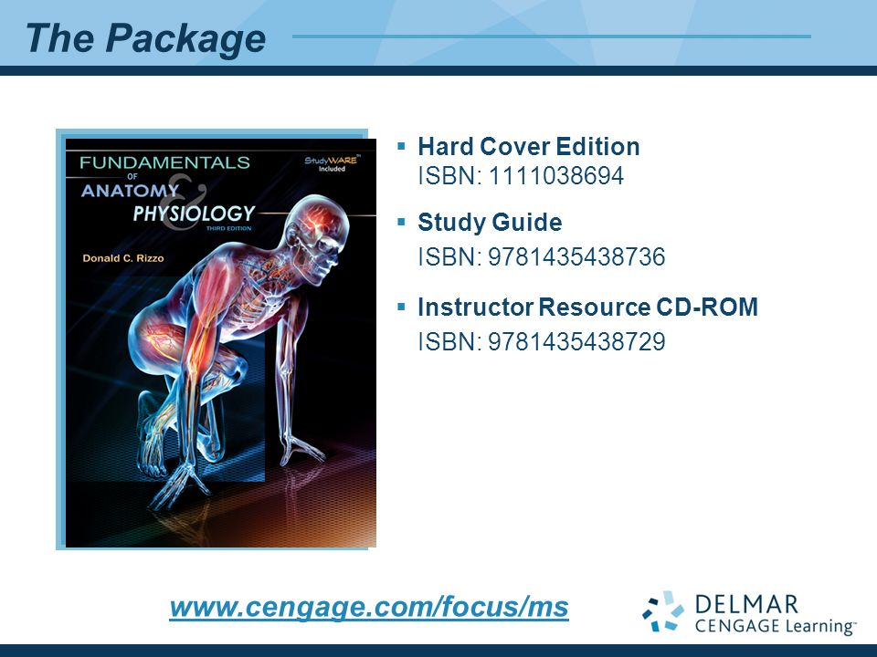 Niedlich Anatomy And Physiology Interactive Study Tools Galerie ...