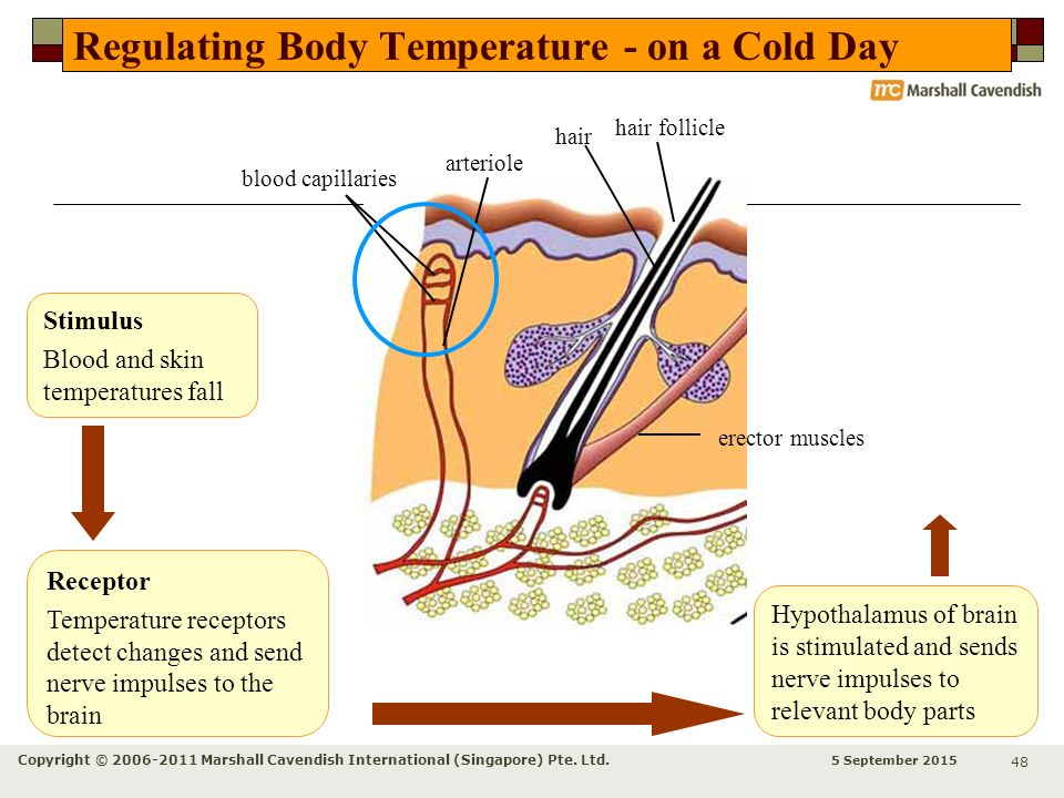 how to change body temperature