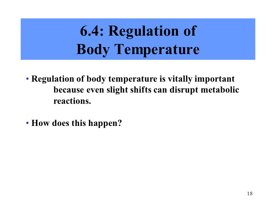 6.4: Regulation of Body Temperature