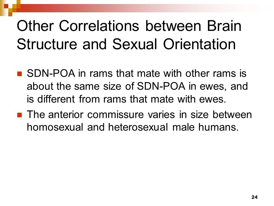 Homosexuality may be triggered by environment after