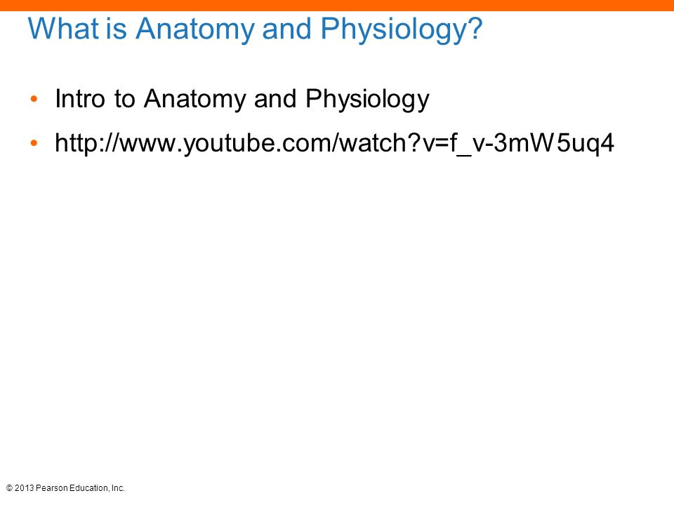 human anatomy and physiology: unit 1 - ppt video online download, Human Body