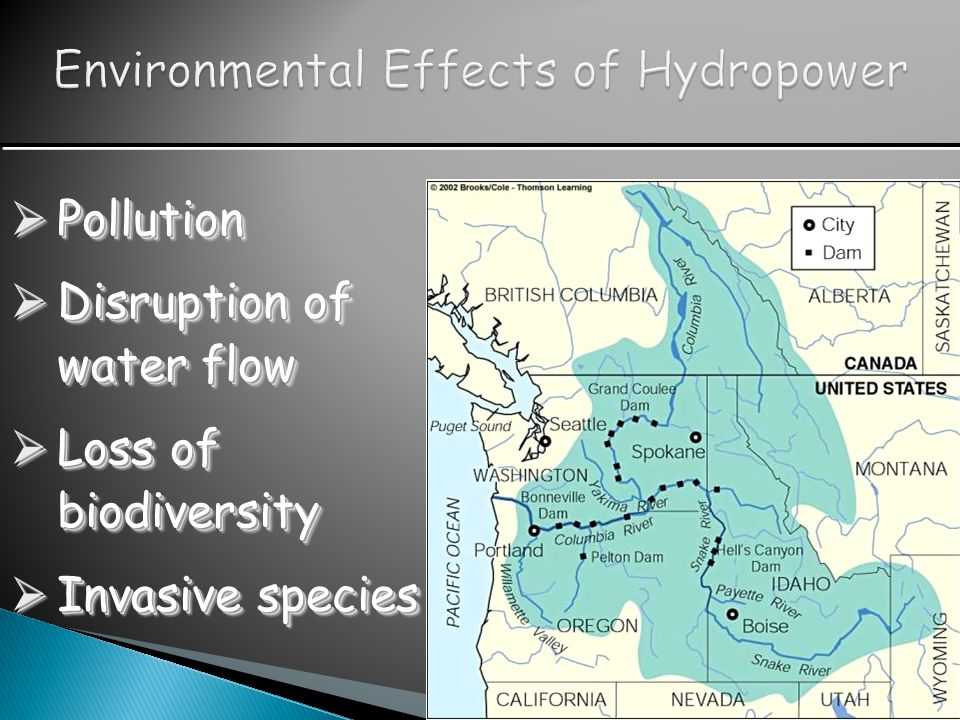 Environmental Effects of Hydropower