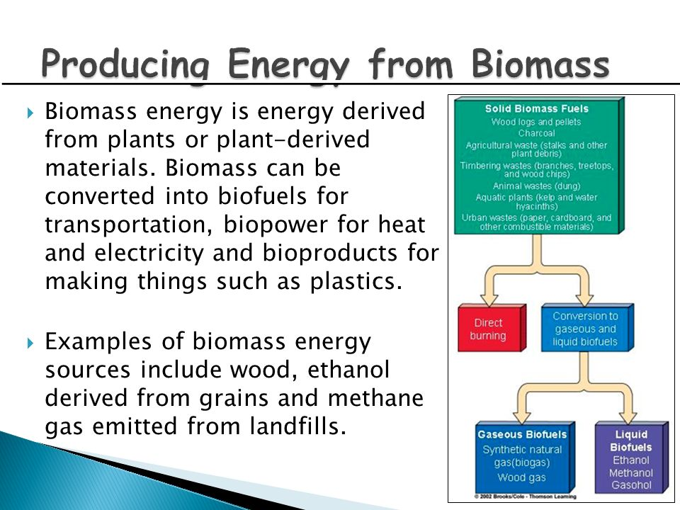 Producing Energy from Biomass