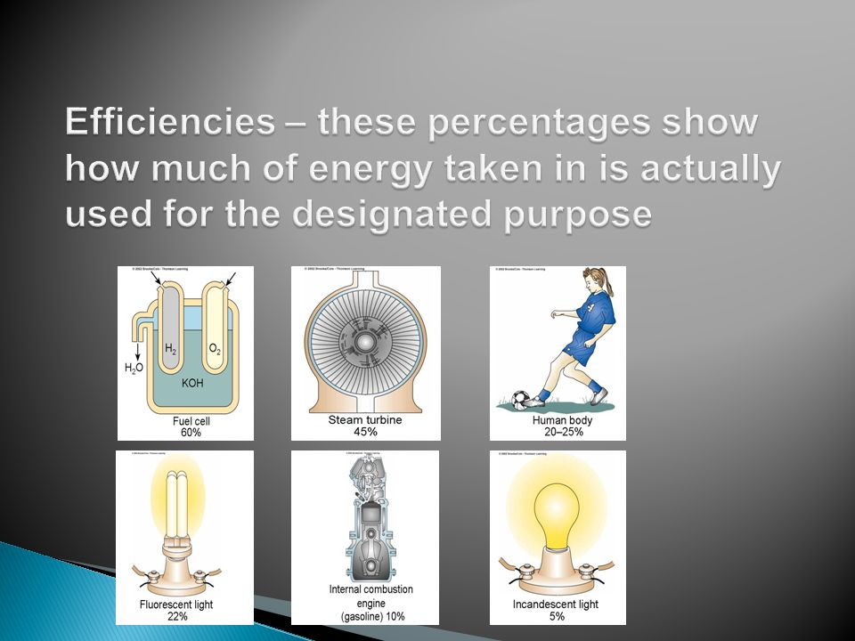 Efficiencies – these percentages show how much of energy taken in is actually used for the designated purpose