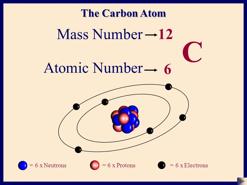 The Atom (Basic Structure - 1) - ppt download