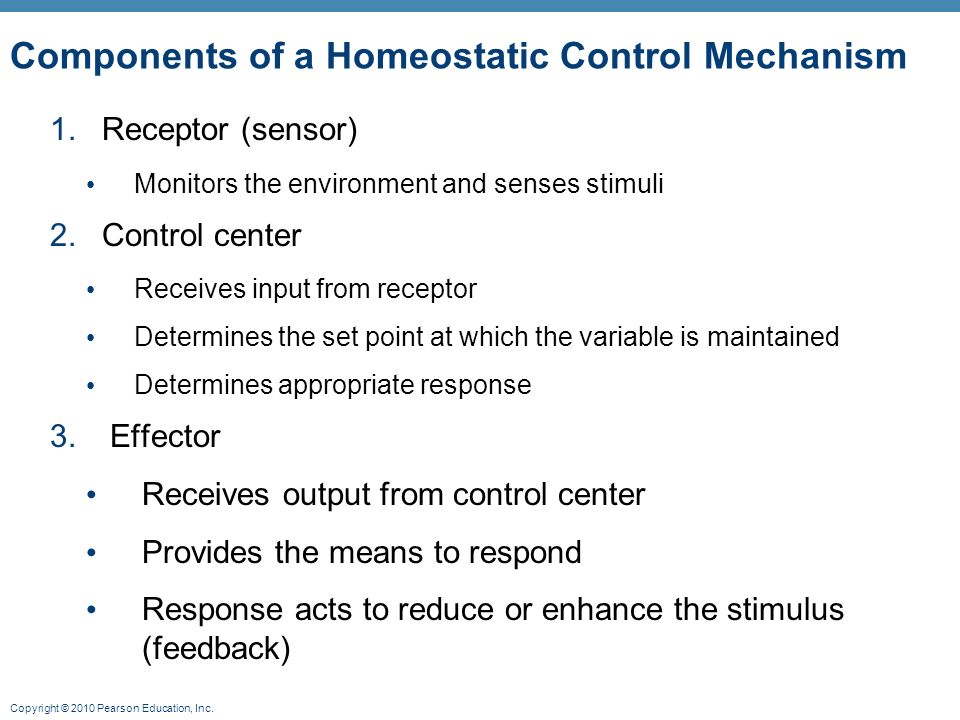 Components of a Homeostatic Control Mechanism