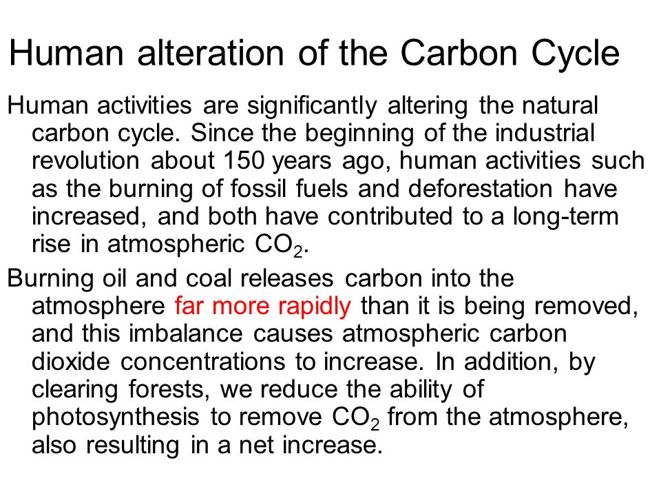 human alteration of the carbon cycle Human activities have altered the natural cycles of ghgs the natural carbon  cycle has been shifted toward accumulation in the atmosphere human activities .