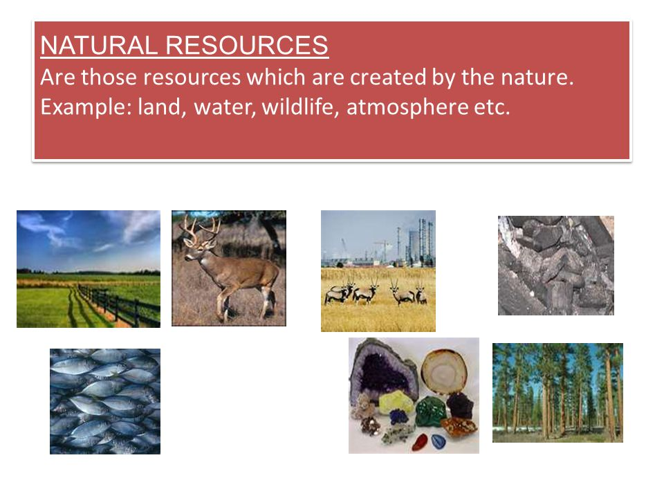 NATURAL RESOURCES Are those resources which are created by the nature