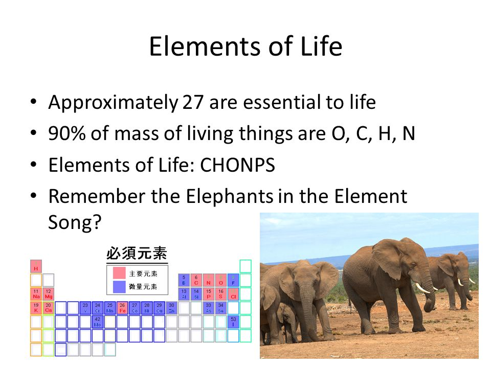 Elements of Life Approximately 27 are essential to life