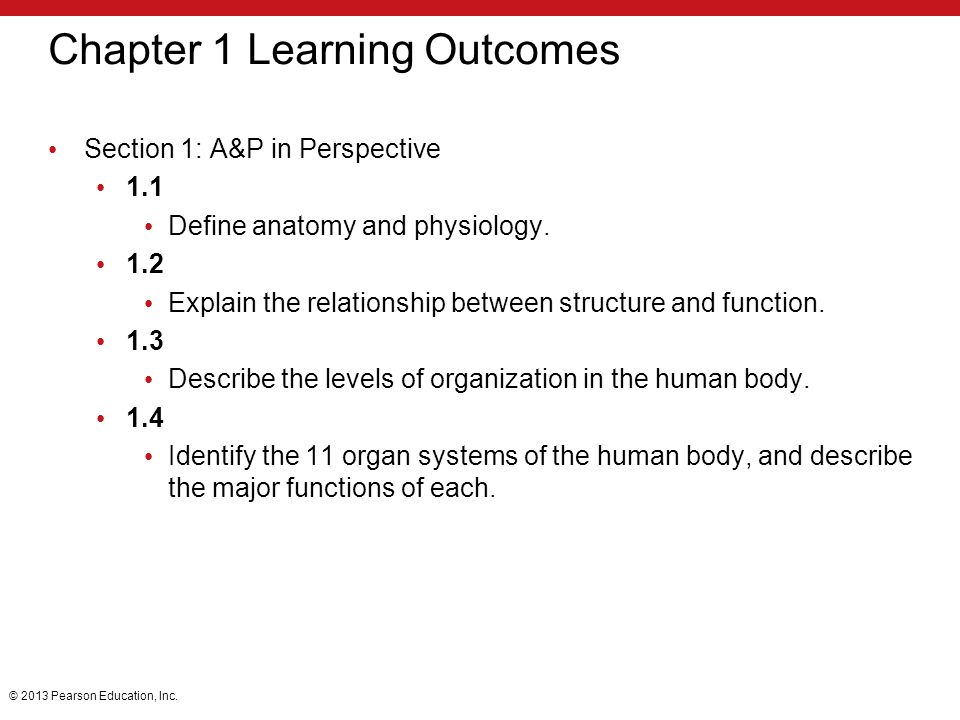 chapter 1 Introduction to Anatomy and Physiology TEST 4666435 ...