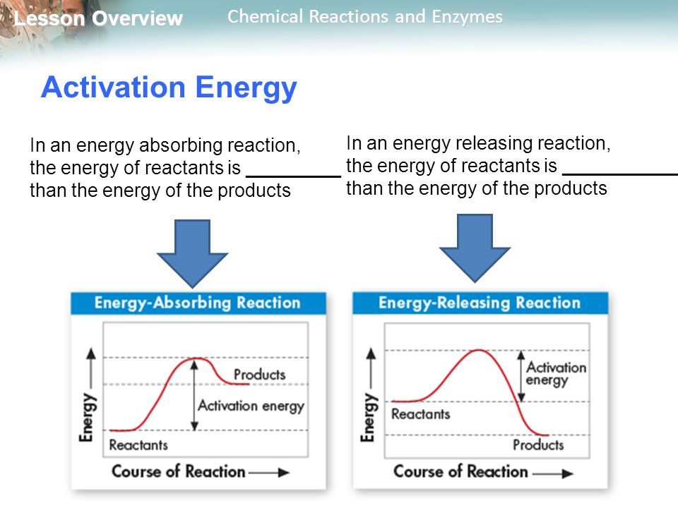 Activation Energy In an energy absorbing reaction,