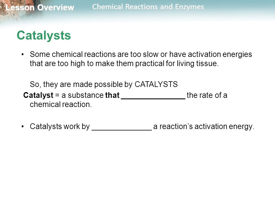 Catalysts Some chemical reactions are too slow or have activation energies that are too high to make them practical for living tissue.