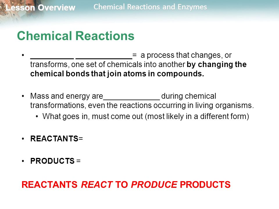 Chemical Reactions REACTANTS REACT TO PRODUCE PRODUCTS
